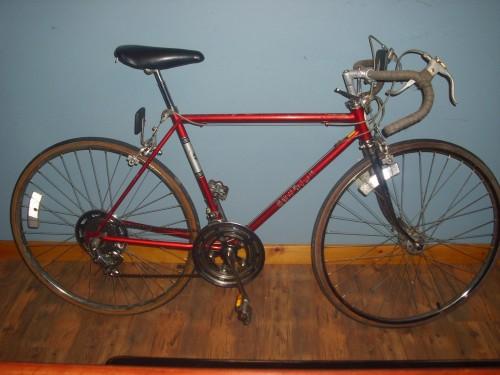 Schwinn Bicycle Painting : Jose r s schwinn sierra old ten speed gallery