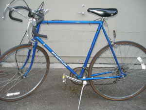 seattle-shogun-10-speed.jpg